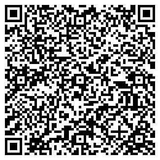 QR-код с контактной информацией организации № 482