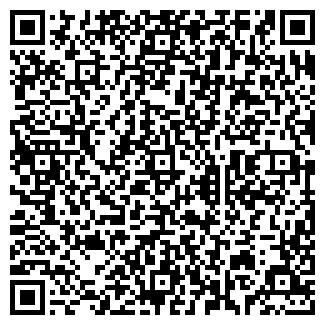 QR-код с контактной информацией организации № 495