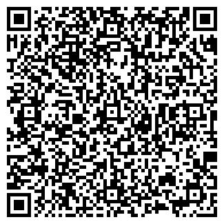 QR-код с контактной информацией организации № 507