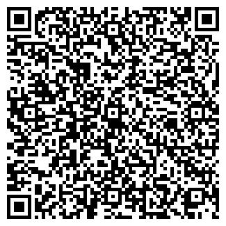 QR-код с контактной информацией организации № 537