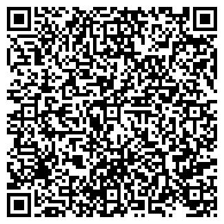 QR-код с контактной информацией организации PAINTLIFE