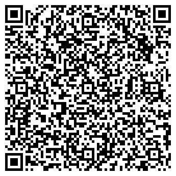 QR-код с контактной информацией организации ПУШКИН 2 - 196602