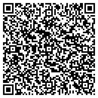 QR-код с контактной информацией организации НИКАНОРОВ, ЧП