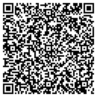 QR-код с контактной информацией организации ДАНС ИЧП