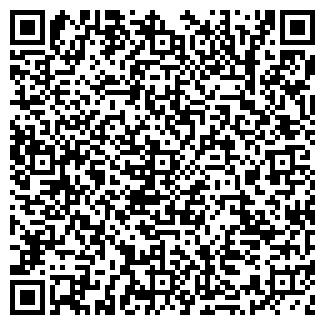 QR-код с контактной информацией организации ДИНГУЛЬ, ЗАО