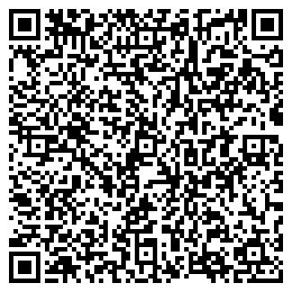 QR-код с контактной информацией организации ПИГИНА