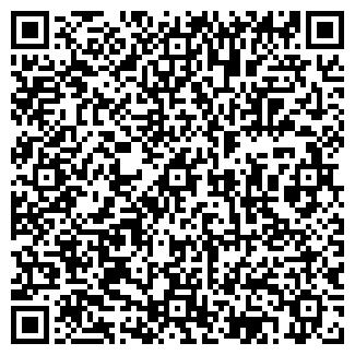 QR-код с контактной информацией организации 5 ЭЛЕМЕНТОВ