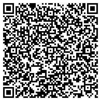 QR-код с контактной информацией организации ИП «Technocolor»