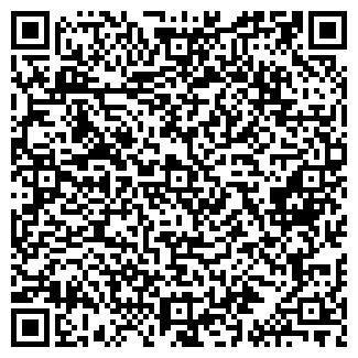 QR-код с контактной информацией организации СИСТЕМА-ХОЛДИНГ