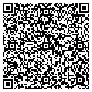 QR-код с контактной информацией организации СНЕЖНОЕ
