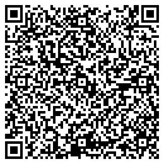 QR-код с контактной информацией организации ООО КОЛОРИТ ЛТД