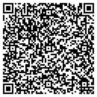 QR-код с контактной информацией организации VIP