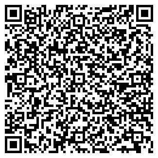 """QR-код с контактной информацией организации """"БИЛАЙН"""""""