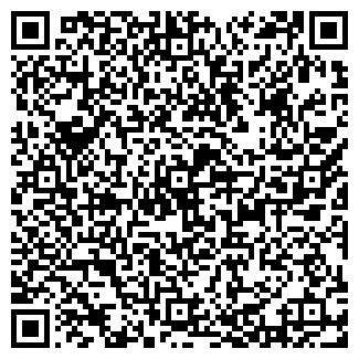 QR-код с контактной информацией организации БАСОВ В.В.