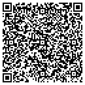 QR-код с контактной информацией организации ВИКИНГИ ЛТД