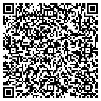 QR-код с контактной информацией организации ООО ДМВ