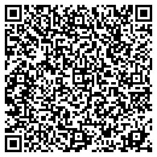 QR-код с контактной информацией организации ИП NTN