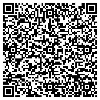QR-код с контактной информацией организации ИП Николай