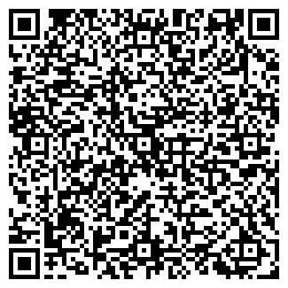 QR-код с контактной информацией организации Reistra.ru