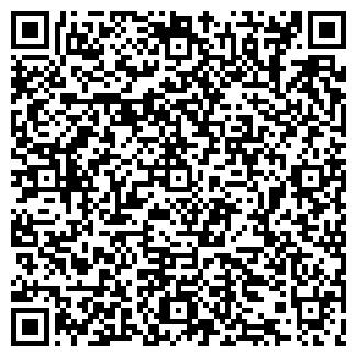 QR-код с контактной информацией организации 138 попугаев