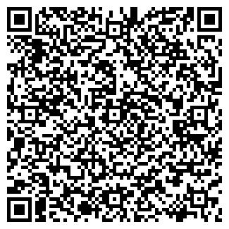 QR-код с контактной информацией организации ИЗОБИЛИЕ, ООО