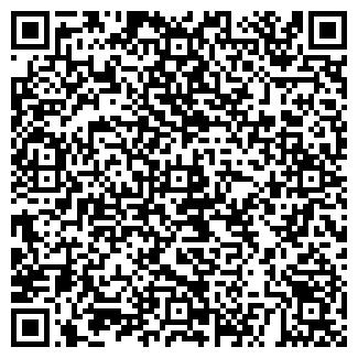QR-код с контактной информацией организации ВАНИЛИН, ООО