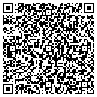 QR-код с контактной информацией организации БИЛСУ, ООО