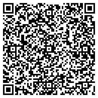 QR-код с контактной информацией организации ООО АЛЬВИС