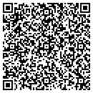 QR-код с контактной информацией организации ИП Визит+