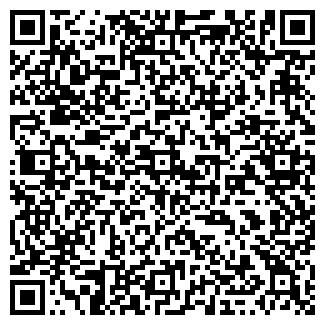 QR-код с контактной информацией организации ИП Бадытчик Грузоперевозки