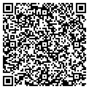 QR-код с контактной информацией организации Master, ИП