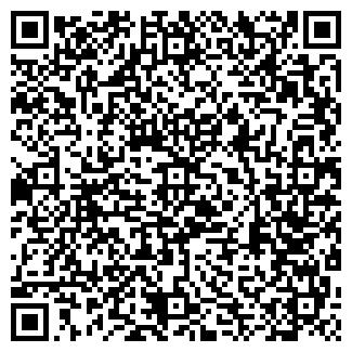 QR-код с контактной информацией организации ООО Вектор-Альфа