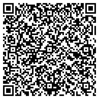 QR-код с контактной информацией организации ИП Netmark
