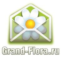 """Гранд Флора"" Белая Калитва"