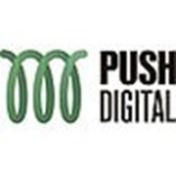 Веб студия PUSH Digital