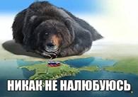 Юридическое бюро Виктора Вахрушева