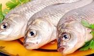 «Сызранский рыбокомбинат»
