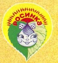 """""""Реабилитационный центр для детей и подростков с ограниченными возможностями """"Росинка"""""""