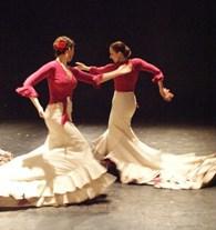 """""""Idioma Flamenco"""""""