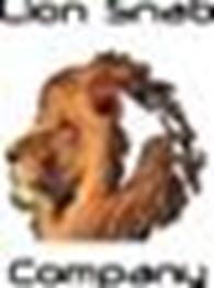 Lion snab company (Лион снаб компани), ТОО