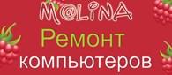 МАЛИНА Ремонт компьютеров Вельск