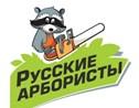 Русские Арбористы