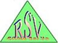 Компания Rising Sei Va