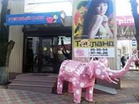 """""""Розовый слон"""""""