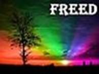 Рекламное Агентство «Free Day»