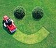 ИП Озеленение