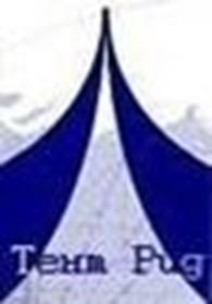 Тентовые конструкции - Тент Рид