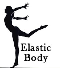 Elastic Body