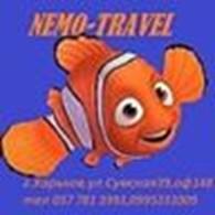 Туристическое агентство *Nemo-travel*