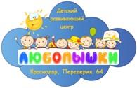 """Детский развивающий центр """"Любопышки"""""""
